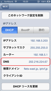 iPhone Wi-Fi DNS Settings